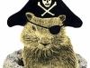 groundhog-pirate2