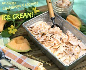 No Churn Cantaloupe & Coconut Ice Cream with vanilla bean